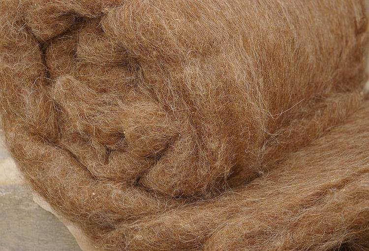 Фото: верблюжья шерсть